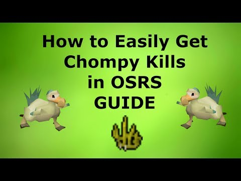 How To Get Chompy Kills (150-200 Hour) In OSRS