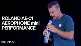 Roland AE-01 Aerophone mini: Performance and Sounds