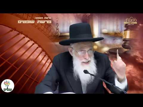 פרשת שופטים - הרב יהודה יוספי  HD - שידור חי