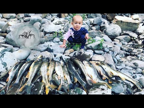 FISHING OVERPOPULATED RIVER!!!