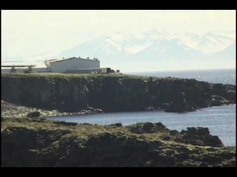 Imagine living here. Grimsey, an Arctic island in Iceland