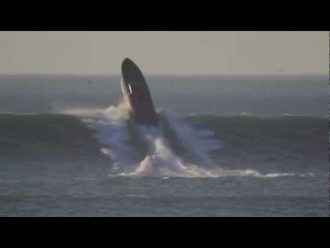 Donzi Powerboat Massive Drop Dubstepified