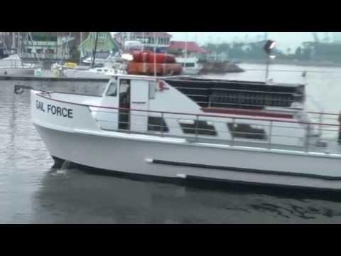 Dan Hernandez Shares Gail Force Promo | SPORT FISHING