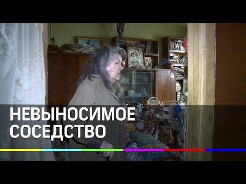 Женщина захламила квартиру и устроила нашествие тараканов и клопов