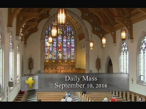 Daily Mass, Saturday 10 September 2016