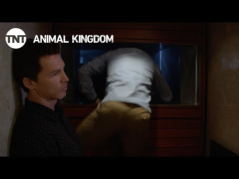 Thumbnail: Animal Kingdom: Forgive Us Our Trespasses - Season 2, Ep. 5 [CLIP] | TNT