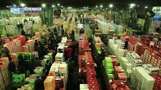 [내일은과일왕1부] 가락시장 과일 도매시장, 직업의세계…