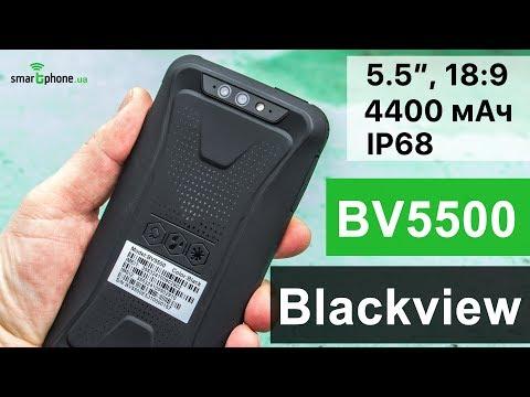 Blackview BV5500 - Обзор по полной, не жалели!