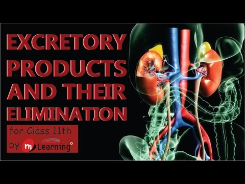 EXCRETORY PRODUCTS AND THEIR ELIMINATION: WASTE PRODUCTS - 01 For Class 11th and AIPMT