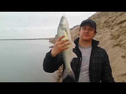 казахстан рыбалка на жереха