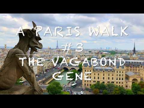 A Paris City Walking #3 City Center Notre Dame, Latin Quarter, Ile de la Cite