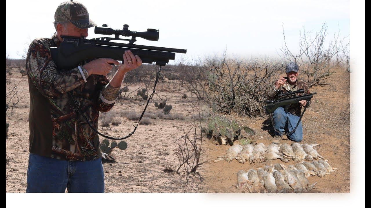 Airgun Hunting Renegade: Hunting Jackrabbits with an Airgun!