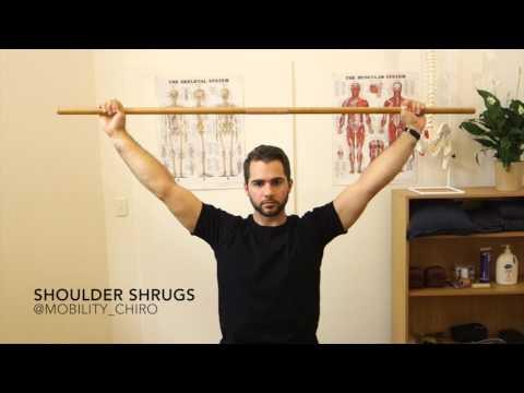 Shoulder Shrugs