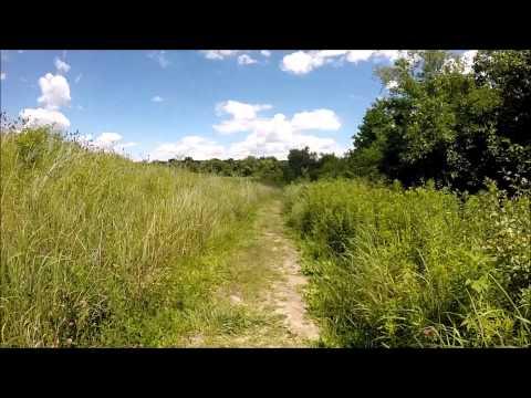 LeFurge Woods Nature Preserve, Superior Township, MI [HD]
