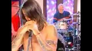 Red Hot Chili Peppers desecration smile live acustic