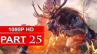 The Witcher 3 Gameplay Walkthrough Part 25 [1080p HD] Witcher 3 Wild Hunt - No Commentary