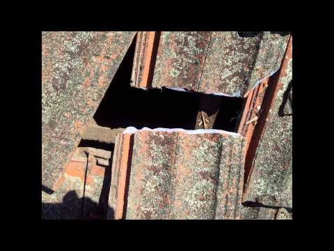 leaking roof repair Sydney- neat trick when you have no spare replacement roof  tile