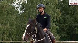 J'éduque mon cheval N°16: l'incurvation