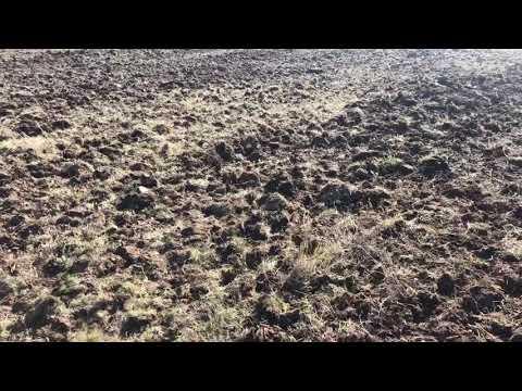 Разработка залежных земель
