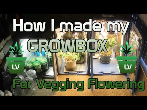 How I made my Grow Box for Vegging and...