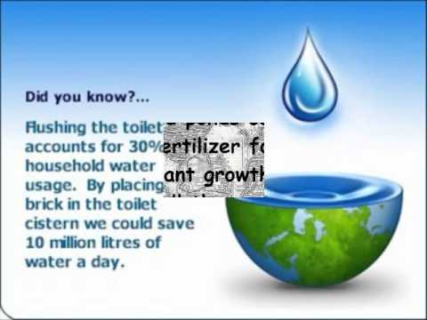 Report writing on save water