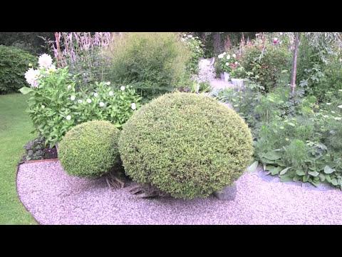 Charlotte Andersson Gardenflow s trädgård är magisk! Grow your own Sweden