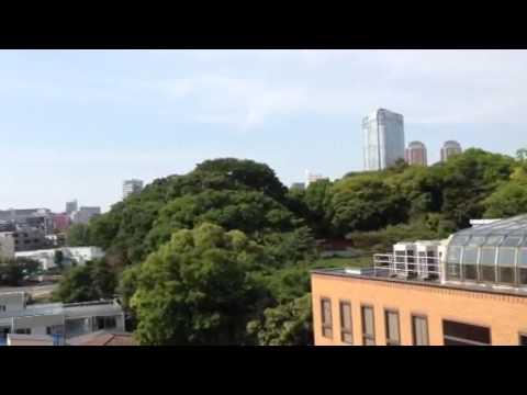 Alan Merrill, Azabu Court Tokyo, Balcony view, May 2015