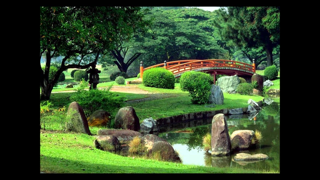 beautiful natural scenery - youtube