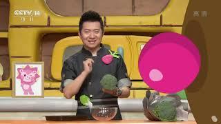 [智慧树]果果美食屋:创意美食大比拼之大树沙拉|CCTV少儿
