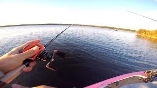 $50 FLAIR FISH CHALLENGE