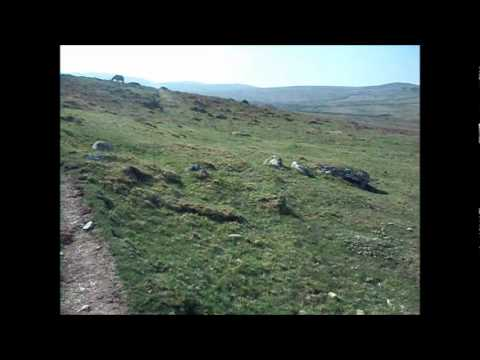 Conwy and the Coastal Hills - moderate guided walk