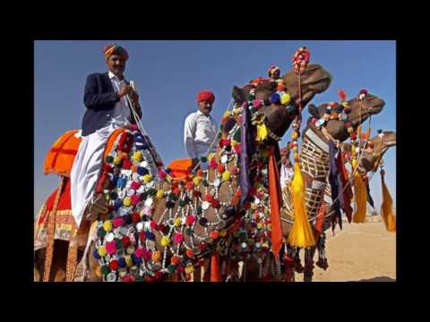 Incredible Rajasthan Tours by Anand Travel India
