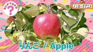 【くだものクイズ】果物なーんだ?おうちで知育【赤ちゃん・子供向けアニメ】Fruits animation for kids