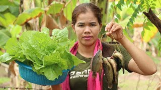 Amazing Cooking Fish Soup With Cabbage Delicious Recipe - Fish Soup Recipes  - Village Food Factory