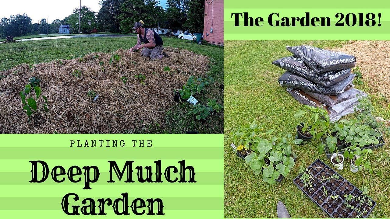 deep mulch gardening, deep mulch gardening |the garden 2018 | planting – gardening videos, Design ideen