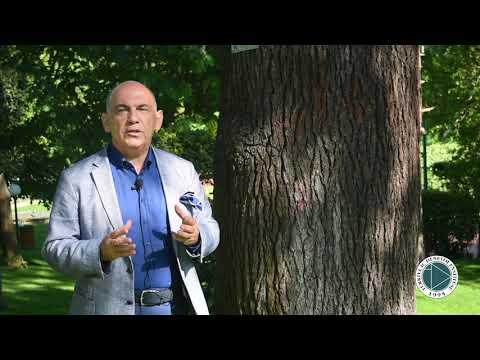 Güçlü Bellek, Sağlam Gelecek     TİDE Kurucu ve Onursal Başkanı Ali Kamil Uzun