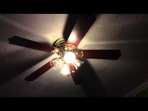 """52"""" Hampton Bay Carriage House II Ceiling Fans in a Coffee Shop"""