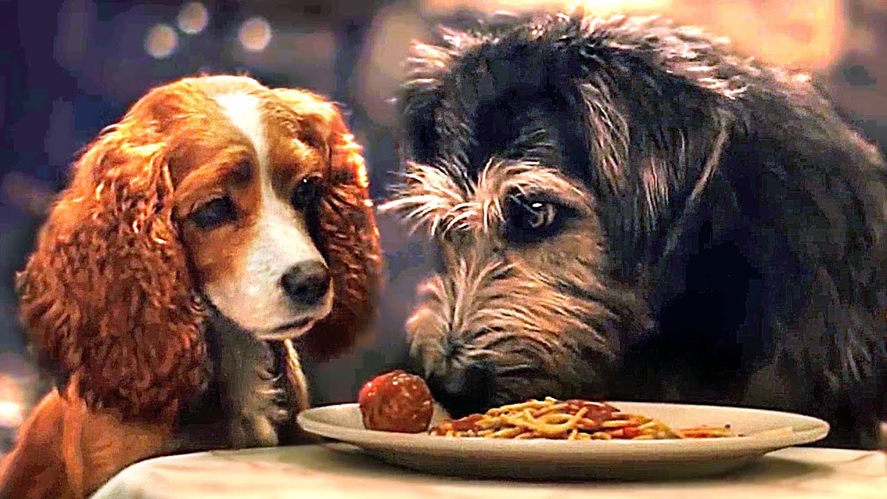 Lady And The Tramp Full Movie Trailer 2019 Disney Youtube