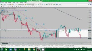 RobotFX Fluid - Trading with stoploss vs hedge losing trades