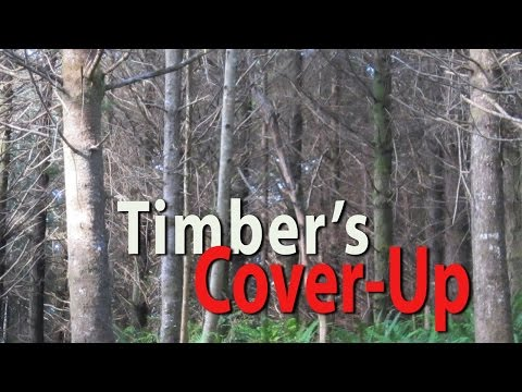 Timber's Cover-Up: The Truth About Oregon Forests