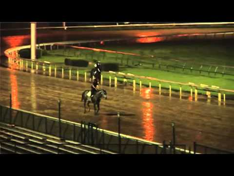 Kentucky Derby 137 - Backside Update - April 24, 2011