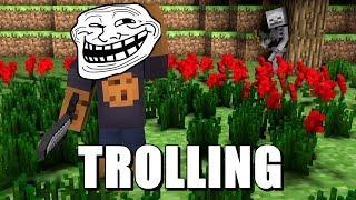 Minecraft - Trolling | Porcii zboara ? :))