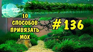 #136 10 СПОСОБОВ ПРИВЯЗАТЬ МОХ. 10 WAYS TO TIE THE MOSS