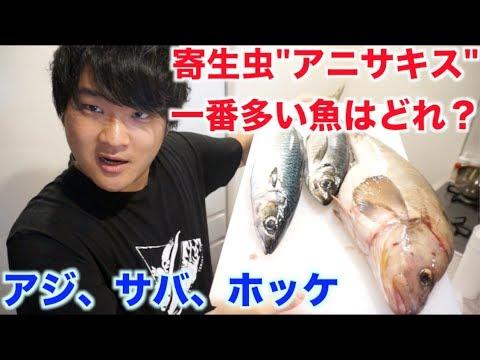 焼き魚 アニサキス www.さとなお.com(さなメモ): アニサキスにあたって、一生ほとんどの魚が食べられなくなった話