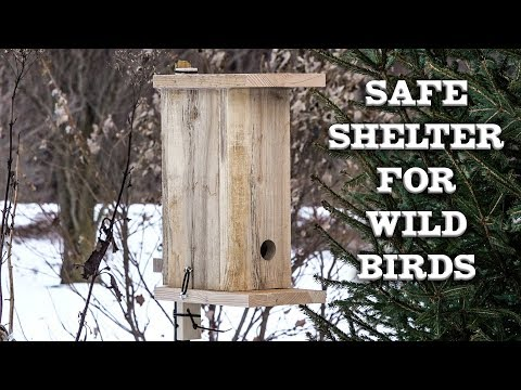 small-wild-bird-winter-shelter-roost-construction-and-review-hot-glue?