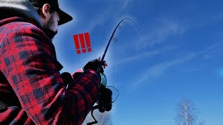 On pêche un poisson PRÉHISTORIQUE !