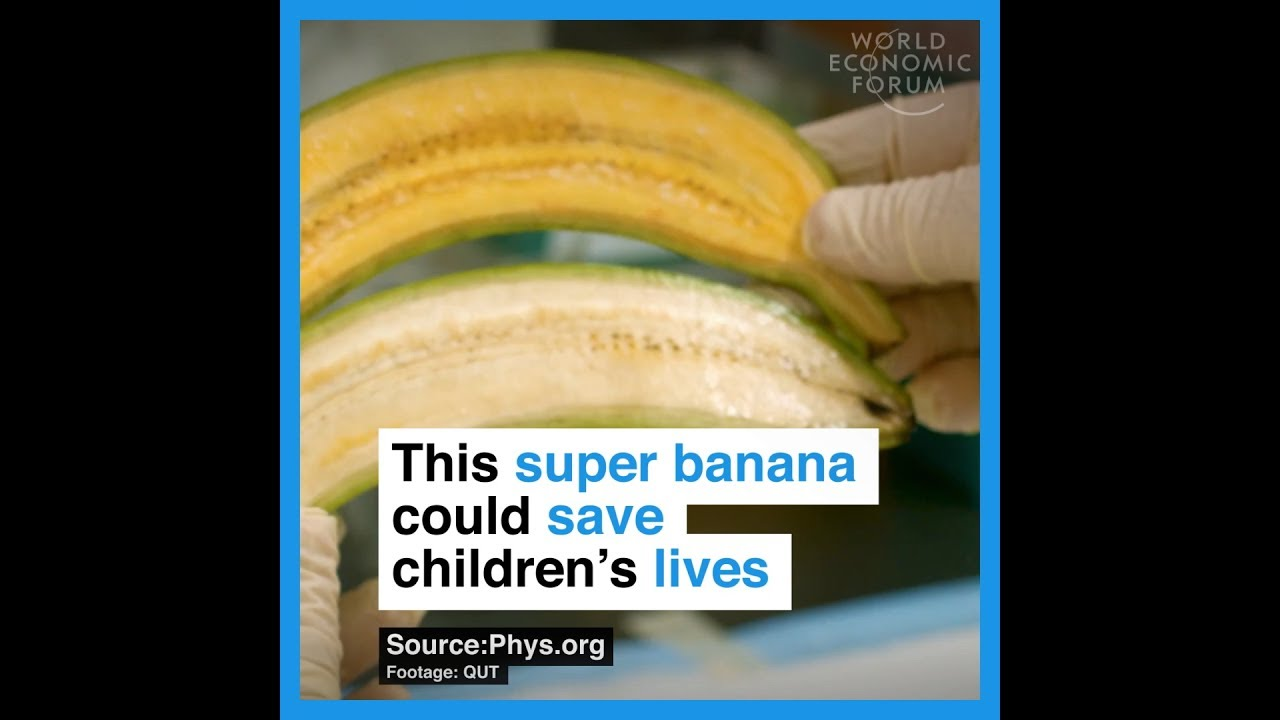 This super banana could save children's lives