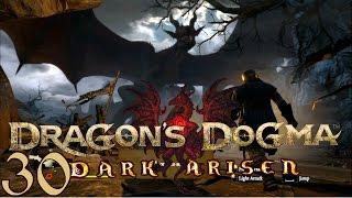 Dragon's Dogma: Dark Arisen (pc)   Stupid Child   30