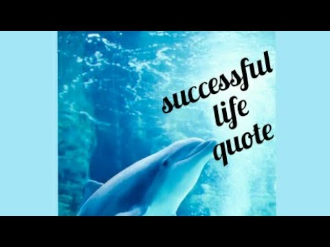 successful life quote