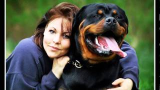 "Rottweiler ""the Best Dog"""
